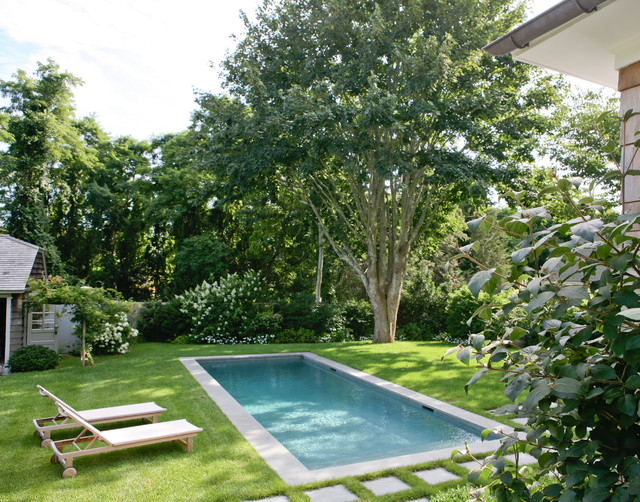 Small Inground Pools Pool Traditional with Beach House Bushes Chaise