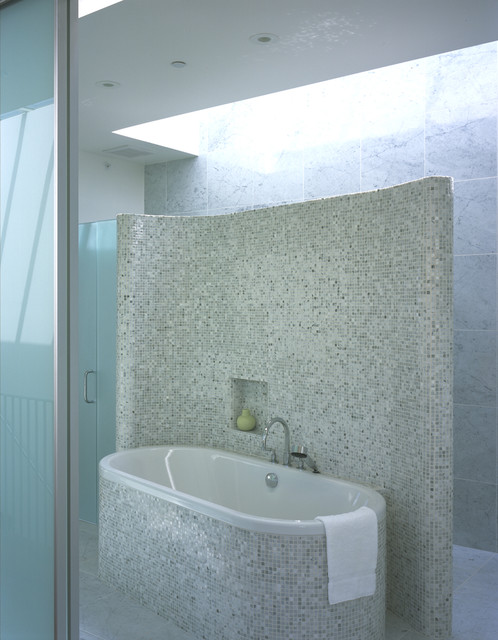 Stand Alone Tubs Bathroom Contemporary with Bathtub Built in Shelf Frosted