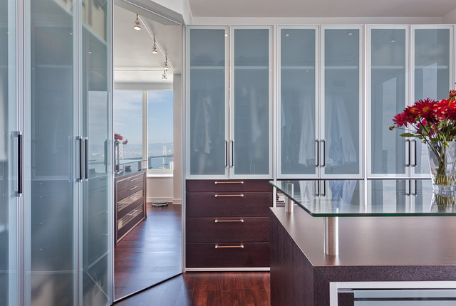 Steamer Insert Closet Contemporary with Built in Storage Glass Countertops