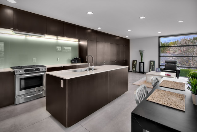 Switchplates Kitchen Modern with Ceiling Lighting Dark Wood