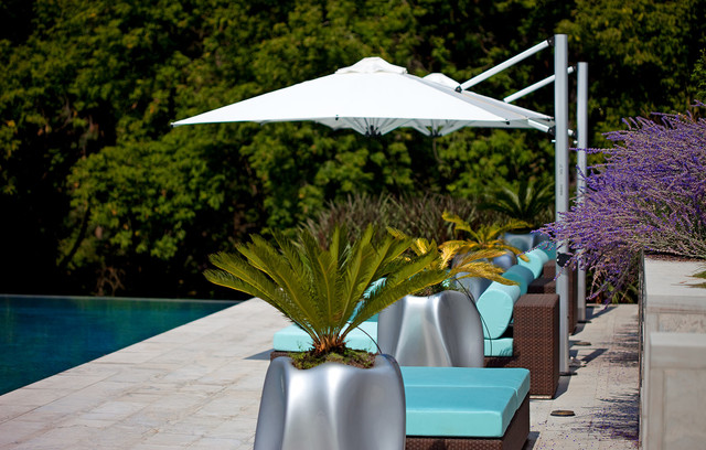 tuuci umbrella Pool Contemporary with chaise lounge container plants