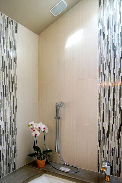 Vertical Bathtub Bathroom Contemporary with Accent Tiles Bullet Tiles
