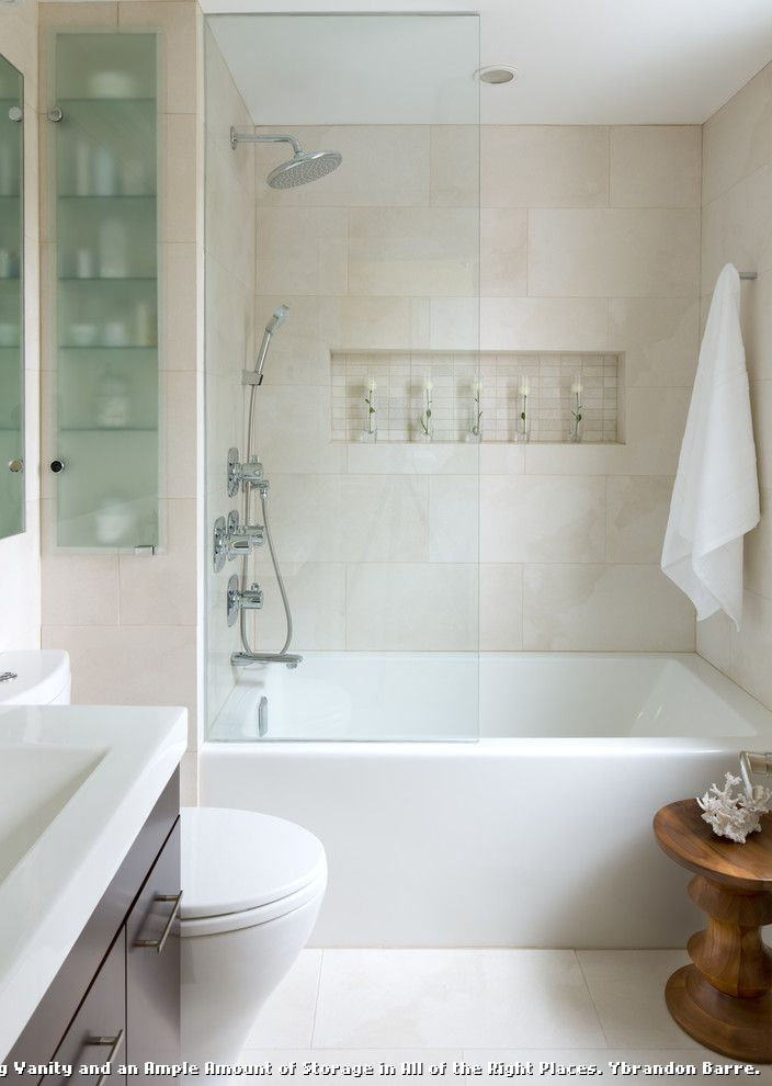 Custom Tub Shades for Contemporary Bathroom and Medicine Cabinet