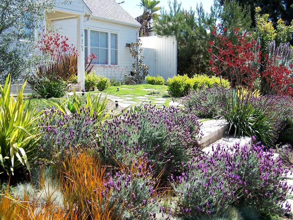 Spanish Mediterranean Homes Drought Resistant Landscape for Traditional Landscape and Overhang