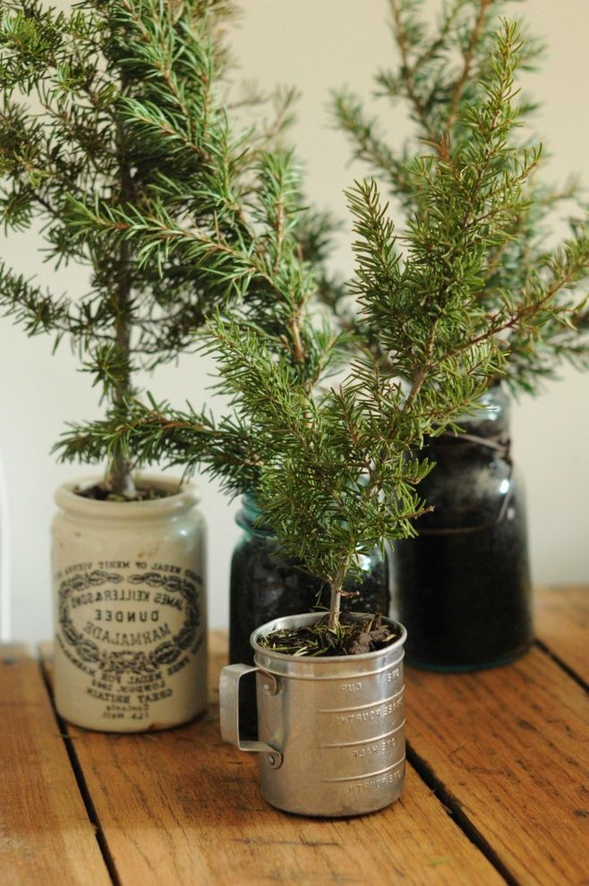 Christmas Tree in a Pot Last Minute Wedding Gifts for Eclectic View Profile Hampton Bay White Puck Lighting