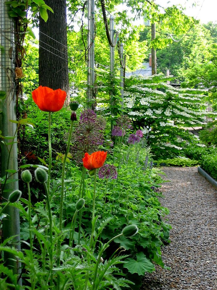 Formal City Garden Gardening by the Yard for Traditional Landscape Outdoor Photos Garden Paths