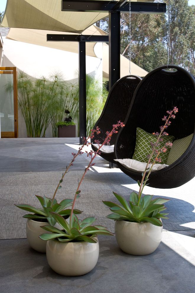Grounded - Modern Landscape Architecture Can You Freeze Eggs for Midcentury Patio Outdoor Photos Gray Patios