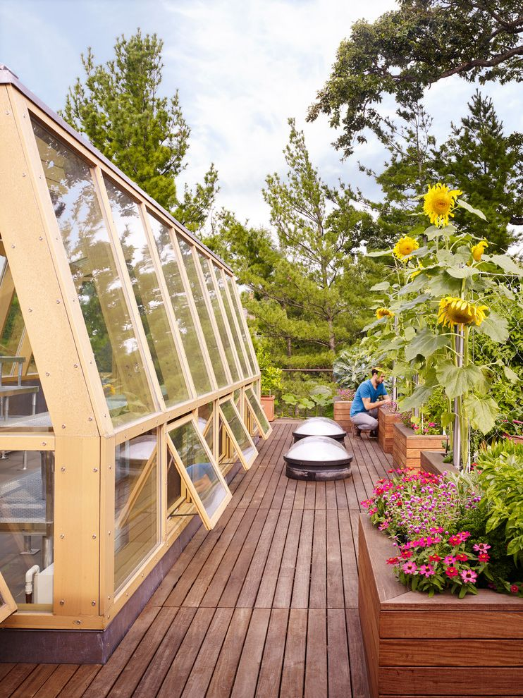 Lake View Modern How to Ripen Green Tomatoes for Contemporary Deck Outdoor Photos Carpenters