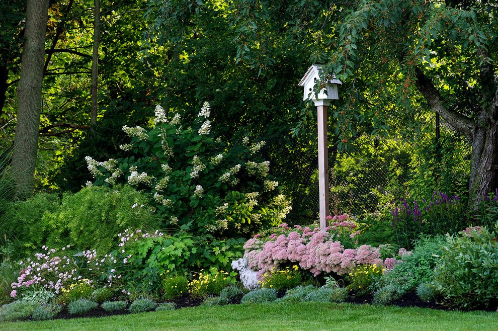 Late Summer Garden Easy Plants to Grow for Traditional Landscape Outdoor Photos Landscapers