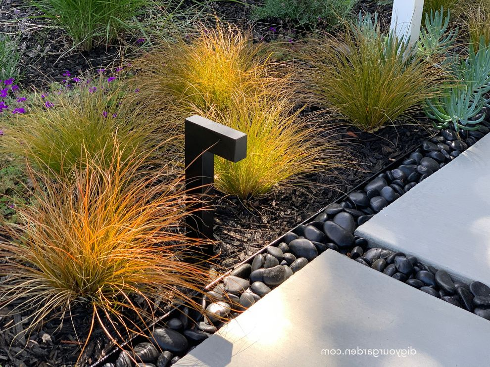 Living Green Wall and Landscape Remodel - Mid-Century Modern Home Sausalito, CA Mid Century Modern Homes for Midcentury Landscape Outdoor Photos Golden Barrel Cactus Landscaping Ideas