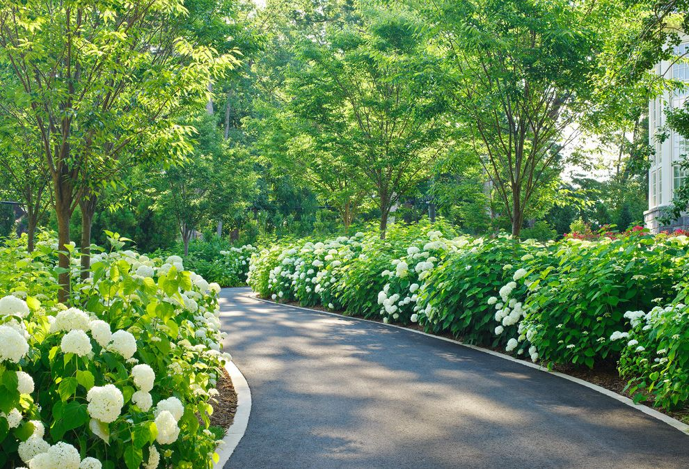 North Arlington Residence Flowers for Each Month for Traditional Landscape Outdoor Photos Landscapers
