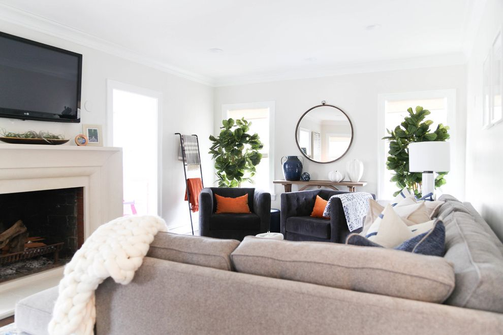 Our Houzz: Bright, Breezy Living Room Caps a Hectic Renovation Fiddle Leaf Fig Care for Transitional Living Room Living Photos Lcd Cabinet