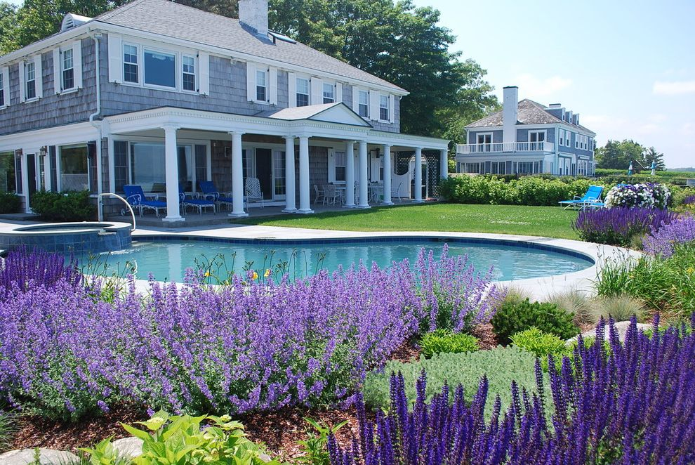 Pool and Spa Easy Plants to Grow for Traditional Landscape Outdoor Photos Covered Porch