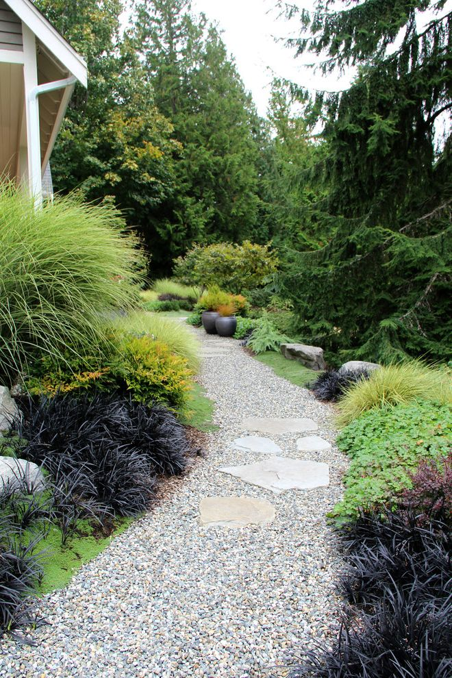 Suhr Brown, Bainbridge Island, Wa Planting Grass Seed in Winter for Contemporary Landscape Outdoor Photos Landscape Architects and Designers