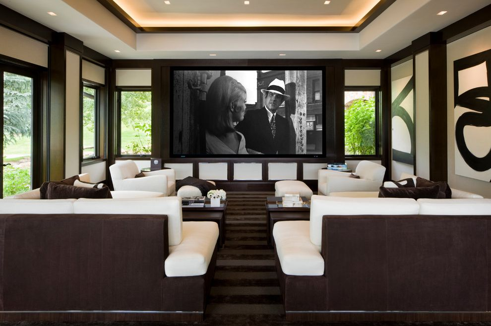 Willoughby Way Movie Theater in House for Transitional Home Theater Living Photos Cabinetry and Custom Cabinet Makers